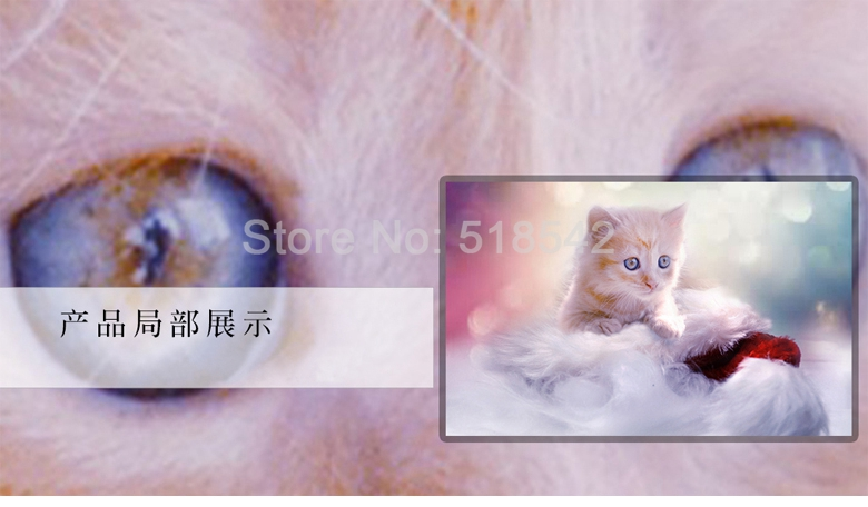 HTB1ehqnRFXXXXapXpXXq6xXFXXXe - Custom Any Size 3D Wall Mural Wallpaper Cute Cat Children Room Bedroom Photo Background Wall Decoration Non-woven Wall Covering