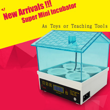 New Cheap Price China Digital Temperature Small Brooder 4 Mini Hatchery Egg Incubator Hatcher for Chicken Duck Bird Pigeon Quail