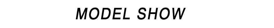 MODEL-SHOW()