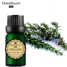 Dimollaure Rosemary essential oil Refresh air fragrance lamp humidifier aromatherapy skin care massage plant essential oil(China)