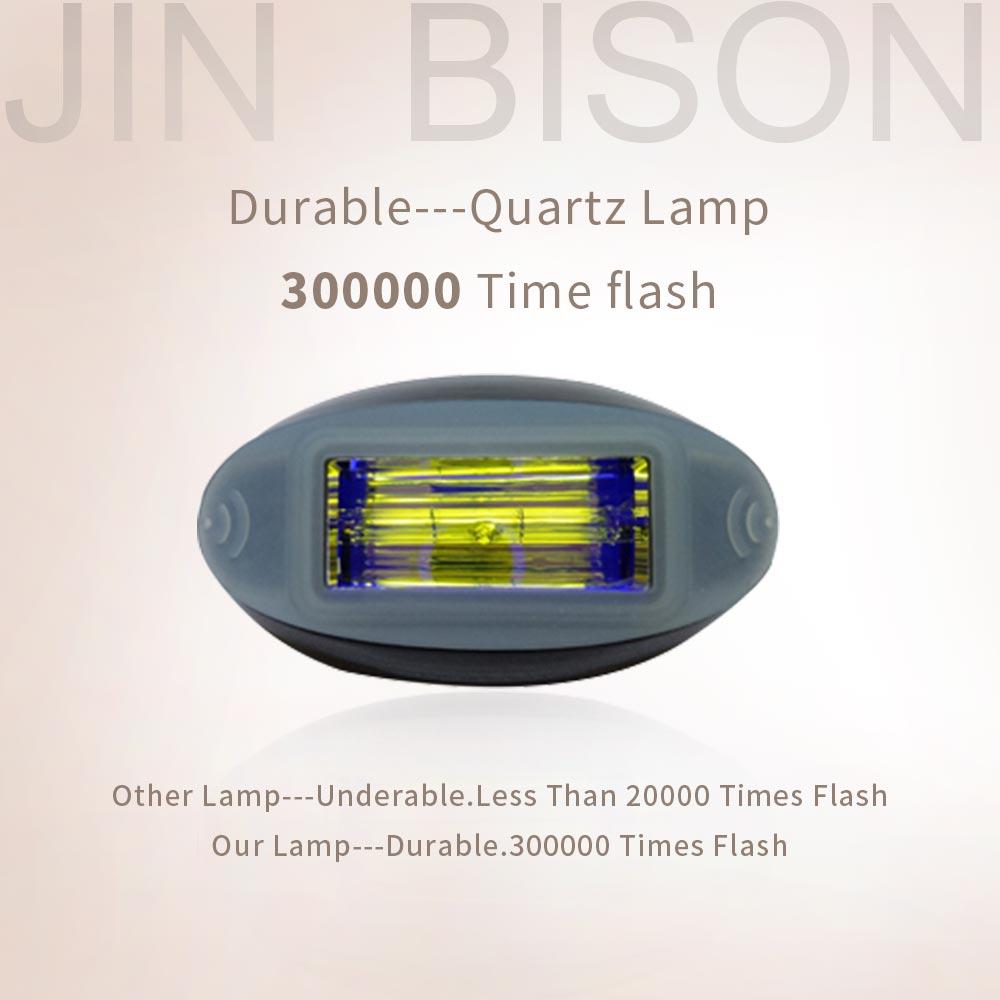 JIN-BISON-11