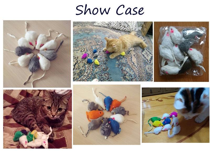 show case cat toy