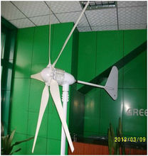 MAYLAR@ 15 Years Life Time 1000W 24V Wind Generator,Dolphin,5pcs Blades,Wind Turbine, CE Certification(China)