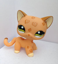 Pet Shop Animal Doll  Figure Child Toy Gril  Boy Short Hair  Cat  DWA278