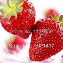 On sale 500pcs multicolor Super big strawberries seeds,flower seed,ghd, perfume bonsai,DIY,home decor,garden supply,home&garden,