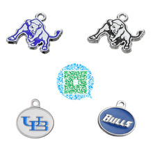 Skyrim 20pcs/lot UB University at Buffalo, the State University of New York Bulls Zinc Alloy Silver Toned Enamel Charms(China)