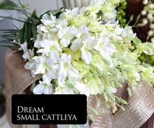 Hot sale  Dream Small Cattleya Flower  decoration colorful and nice  flower