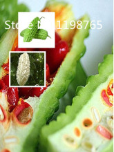Special Price Original genuine balsam pear seeds,fruits and vegetables green bitter gourd seeds, Bitter Melon seeds,about 10 par(China)