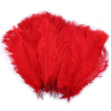 10 PCS Ostrich Feathers Plumage Flapper Dresses for Craft Decoration Making Bulk 50-55cm /20-22 '' pheasant feather(China)