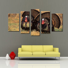 5 Picture Combination Art Gallery Painting Turkeys On The Grass Picture Print On Canvas Animal The Picture Home Decoration