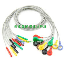 Holter Recorder ECG Patient Cable, 10 lead EKG leadwire, ten leadwires snap , DIN , IEC(China)