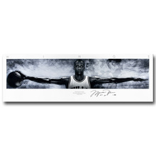 NICOLESHENTING Michael Jordan Wings Art Silk Fabric Poster Huge Canvas Print 13x44 20x68inch Basketball Picture Home Wall Decor(China)