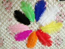 Free shipping sale 50 pc quality pink ostrich feathers, 8-10inches / 20-25cm, DIY wedding decorations(China)