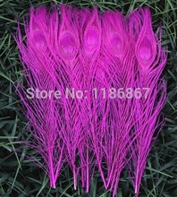 Free shipping fushcia rose hot pink dyed peacock feather 100pcs/lot length 25- 30 cm 10-12 inch beautiful DIY peacock feather