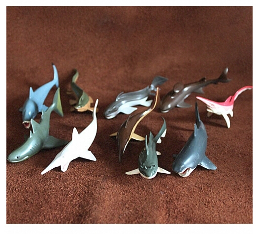 Free Shipping (10 pieces/set) Cretaceous Prehistoric Creatures Sharks Model Toys Ancient Die Out Ocean Animals Collection Set<br><br>Aliexpress