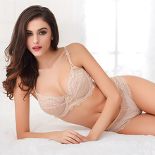Free shipping 2016 fashion plus size transparent sexy lace embroidery women's underwear bra set ABCD cup