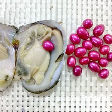 Colorful Rice Pearls in Akoya Oysters Wholesale 6-7mm Rice Freshwater Pearl Oyster Shell Vacuum Pack  Love Wish Pearls FP192