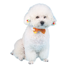 pet dog tie manufacturers pet supplies  dog accessories Cotton bows accessirues