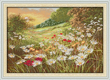 Big Size Needlework kit 14CT stamped cross stitch innovation items embroidery DIY home decoration - Beautiful Flowers (2)(China)