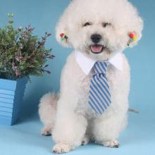 Adjustable Dog Cat Pet Lovely Adorable sweetie Grooming Tie Necktie Wear 8PCttern Clothing Products Sale PC874125