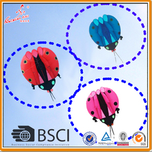 5 sqm Ladybug Kite, soft kite, show kite, Lifter(China)
