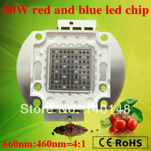 Free shipping DIY grow kit red and blue 80w multichip led grow light chip build your own lampen for indoor growth and flowering