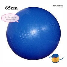 65CM Home Exercise Workout Fitness Yoga Ball For Weight Lose Exercise Training and Balance Exercise With Free Pump