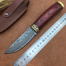 Handmade Damascus hunting knife Damascus steel blade Wood handle survival outdoors knife EDC camping hand tools Free Shipping