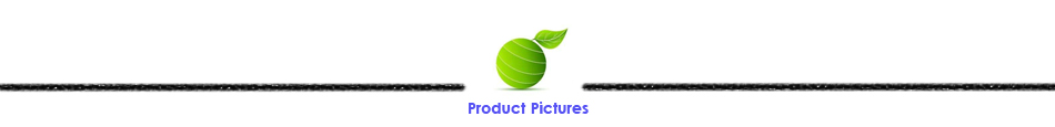 Product Pictures