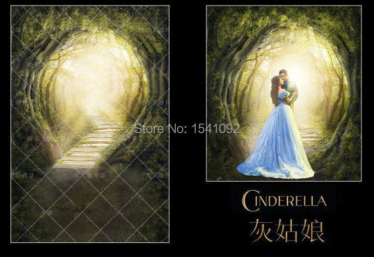 10X12ft Customize vinyl photography backdrop CINDERELLA computer print  background for photo studios<br>