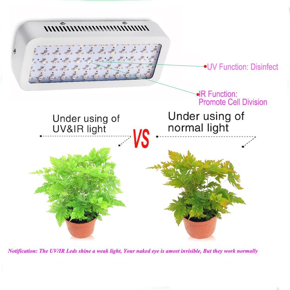 4pcs Lot Led Grow Light Mini 600w Full Spectrum High Yeild Low Heat Brankas Yale Cash Box Medium Ycb 090 Bb2 Lamp For Plants 10w Double Chip Plant Growing Flowering Bj Us314