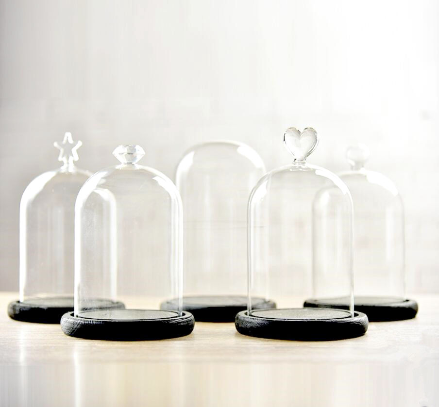 18cm Tall Plastic Bell Jar Cloche on Wooden Stand for Crafts