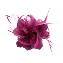 1PC Chic Vintage Women Girls Fascinator Feather Hair Clip Headpiece Wedding Bridal Prom Cocktail Headdress(China)