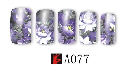 A077(1)