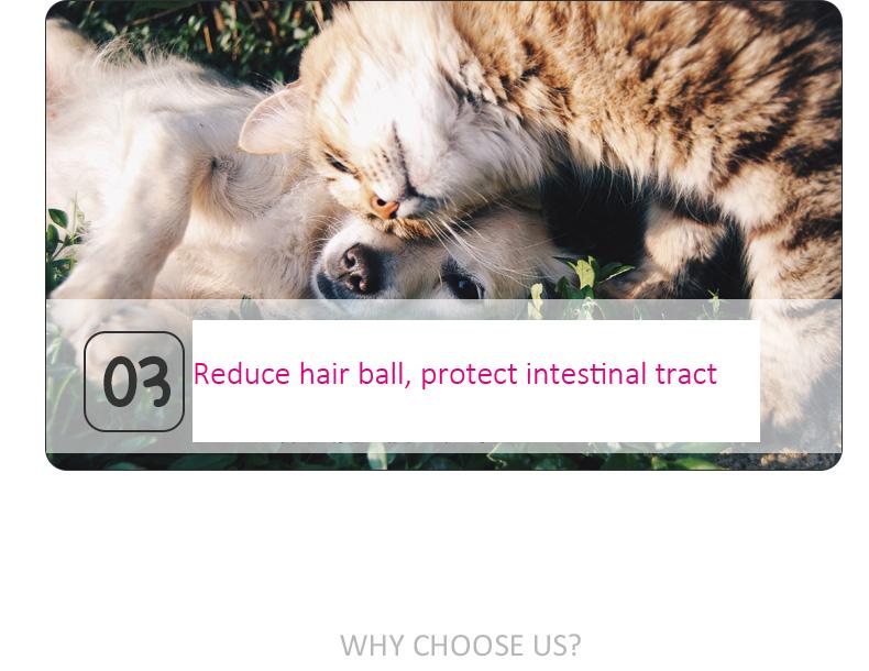 dog cat pet combs (12)