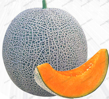 20PCS Japan Fruit Cantaloupe Melon Seeds Original Superior Honey Dew Green Flesh fruit Seeds~Delicious Muskmelon Seeds plant(China)