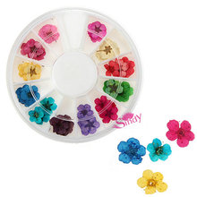 12 Color 3d flower nail art Dried Dry Flower Nail Art Wheel Decoration Manicure Tips Nail Art Product Nail Art Wheel ZX:NW006(China)