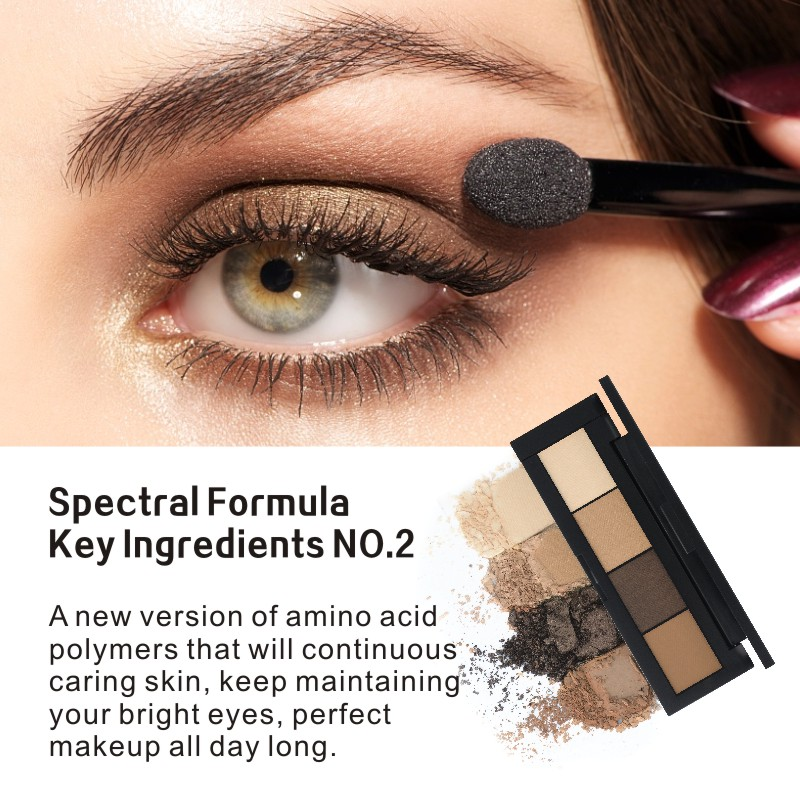 France HENLICS Brand 4 Colors Eyeshadow Palette Glamorous Smokey Eye Shadow Shimmer Colors Makeup Eyeshadow Palette (3)