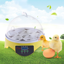 HHD 7PCS Eggs Automatic Poultry Mini Incubator Temperature Control Automatic Poultry Bird Pet Hatcher Chicken Hatcher Machine(China)