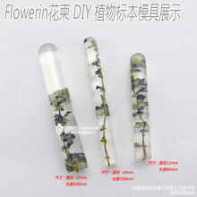Flower Invitation Transparent Cylinder mould -Silicone Special DIY Mould For Resin Real Flower(China)