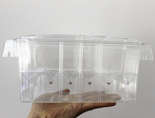 Big Size 4 Rooms and Mini Size Fish Tank Aquarium Incubator Fish Breeding Hatching Box Acrylic Breeding Isolation Box AT003(China)
