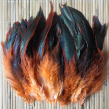 Cheap! 50pcs Color Beautiful Rooster feathers 5-8''/12.5-20cm pheasant chicken plume Free shipping orange(China)
