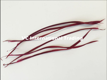 Free Shipping 500pcs Hot Sale Burgundy Color Single Goose Biot Feathers Hair Extension Feather Hat Mask Earring DIY Decoration(China)