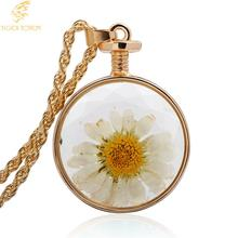 Free Shipping cute white daisy Dried flower pendant Perfume bottle necklace women girl Fashion jewelry Sweater chain tiger totem