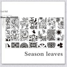 Nail Art Stamping Plates 10 Designs Stainless Steel Polish Template 1 Pc Stencils For Nails sunflower and all kinds of leaf BC19