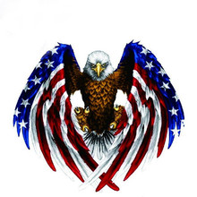 2017 Newest Hot Sale Car Decal Flying Hawk Auto Truck Hood Side Eagle USA Flag Sticker(China)