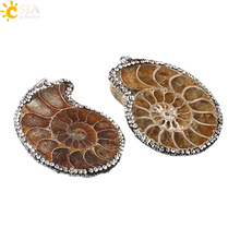 CSJA Natural Ammonite Fossils Snail Shell Pendants Rhinestone CZ Necklaces Statement Women Men Charm Jewellery Accessories E255(China)