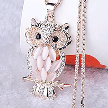 Tomtosh Stylish Gallant Sparkling Owl Crystal Charming Flossy Necklaces & Pendants Necklace For Women(China)
