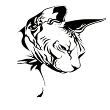21.7*22.9CM Car Sticker Sphynx Cat Decal Fashion Vinyl Car Styling Nice Cool Motorcycle Accessories Black/Silver S1-0198(China)