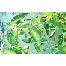 Anti Bird Net Orchard Fruits Tree Plants Netting Protective Mesh Nylon Insect Barrier Net Mouse Trap Garden Pest Control